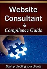 website consultant 4-2-small