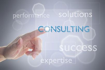 Website Document Consulting